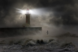 Europe Atlantic Storm with Lighthouse and birds