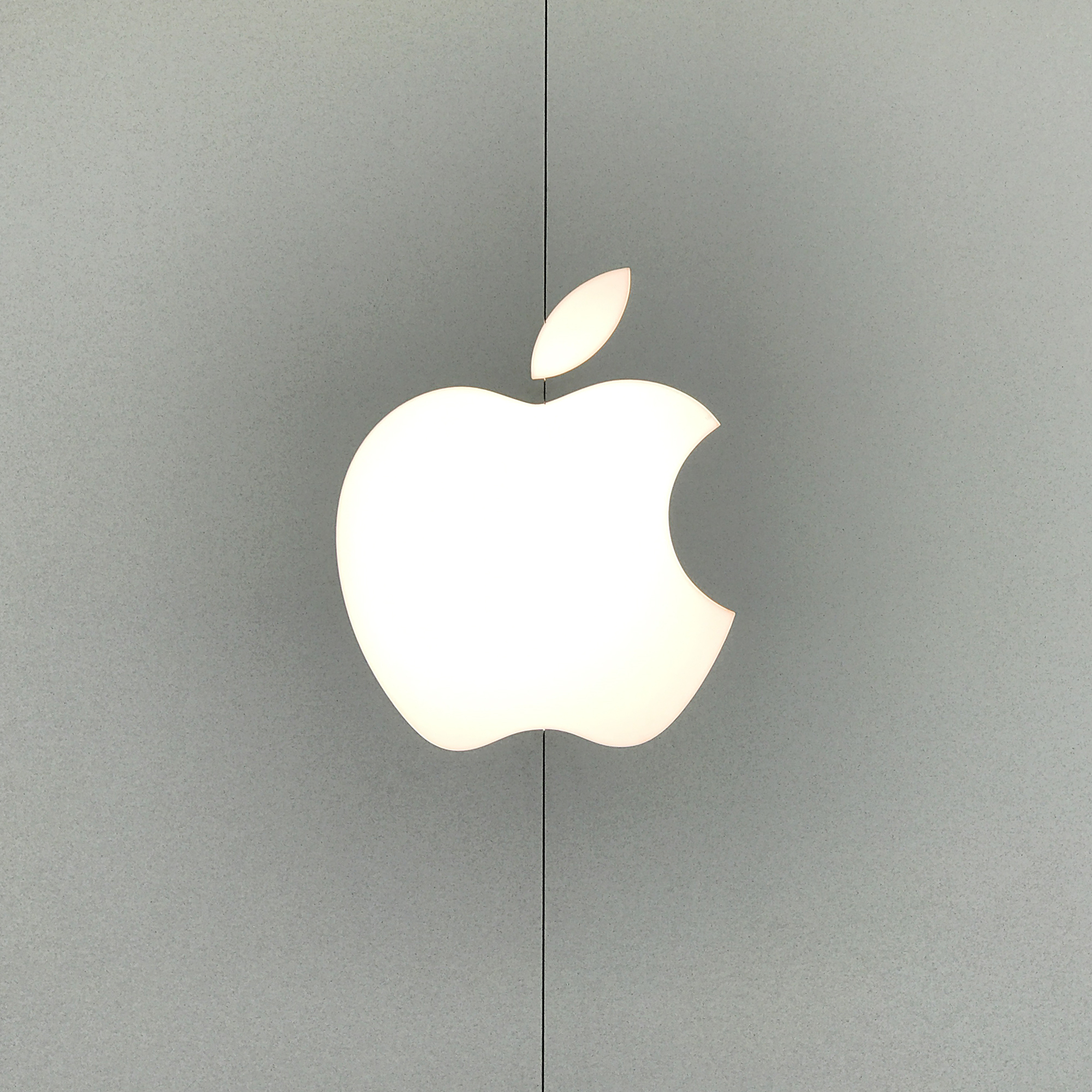 Apple Icon with grey background